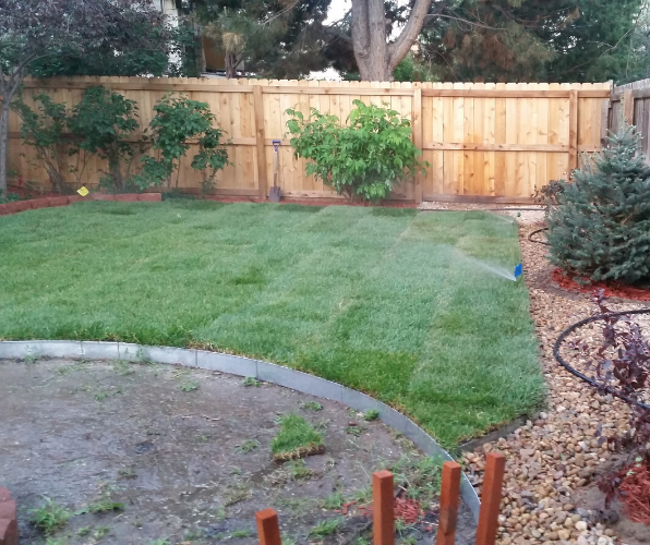 About Us Best Fence Companies Near Me Alpine Fence Pros